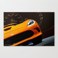 Fierce Canvas Print