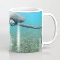 Free Turtle  Mug