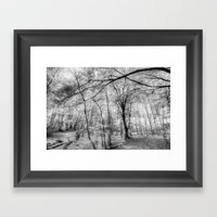 The Ghostly Forest Framed Art Print