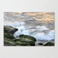 HAIRY ROCKS Canvas Print