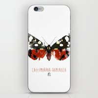 Butter flies - Callimorpha_Dominula iPhone & iPod Skin