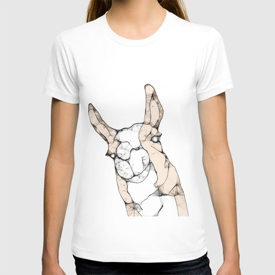In which a llama interrupts T-shirt