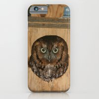Hibou means owl iPhone 6 Slim Case