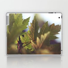 Follow Laptop & iPad Skin