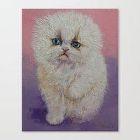 Himalayan Kitten Canvas Print