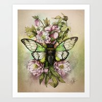 Cicada [The last summer chant]] Art Print