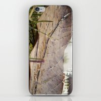 Dew Drops On A Fallen Le… iPhone & iPod Skin