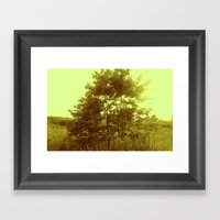 Beauty Of Nature 3 Framed Art Print