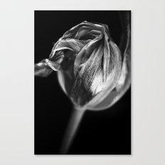 Flora  par Jean-François Dupuis Canvas Print