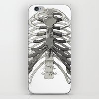 Vector Ribcage iPhone & iPod Skin