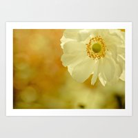 The Last Flower Of Autum… Art Print