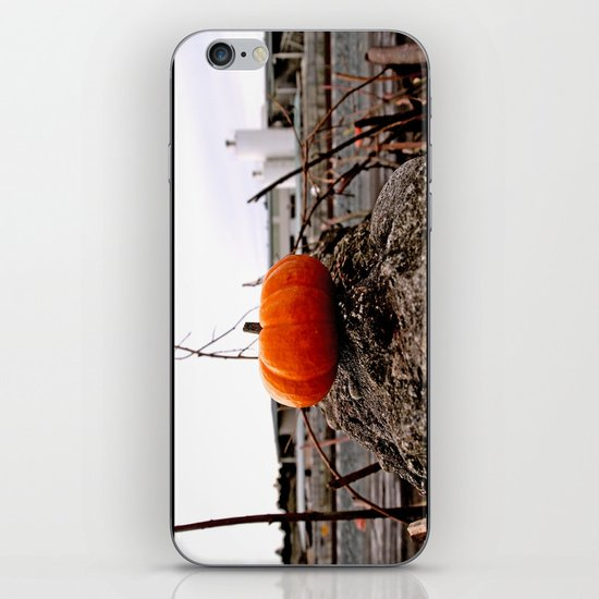 Urban grit pumpkin iPhone & iPod Skin