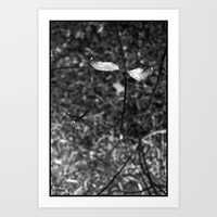 sprouting.. Art Print