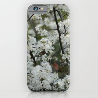iPhone & iPod Case featuring Soft White by Olive Coleman Photography