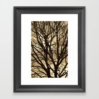 Baum Framed Art Print