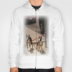 Boston Terriers ~ amped up for action! Hoody