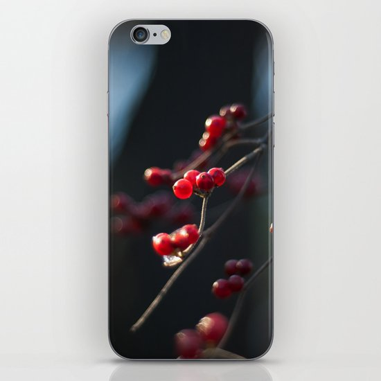 Winter Berries II iPhone & iPod Skin