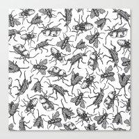 Bugs Bugs Bugs Canvas Print