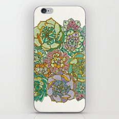 Blooming Succulents iPhone & iPod Skin
