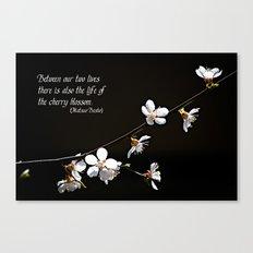 Sakura flowers on black Canvas Print