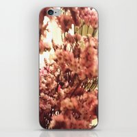 Cherry Blossoms 3 iPhone & iPod Skin