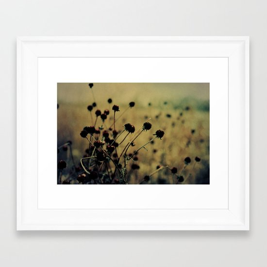 Enchanted Framed Art Print