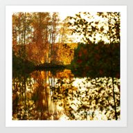 Reflection In October Art Print