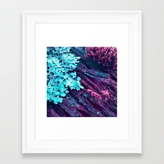 WOODLANDER - deep in the forest Framed Art Print