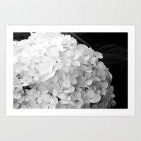 White Flowers No.2 Art Print