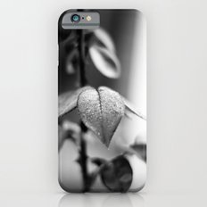 Sparkles in Black and White iPhone 6 Slim Case