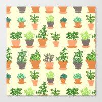 Windowsill Garden Canvas Print