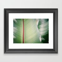Sage + Red Framed Art Print