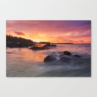 After the rain. Canvas Print