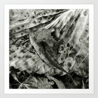 'ABSTRACT LEAF' Art Print