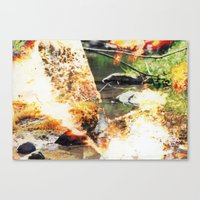 Stream #1 Canvas Print