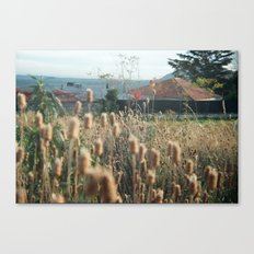 autumn weed Canvas Print