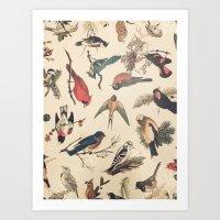 Vintage Songbirds Art Print