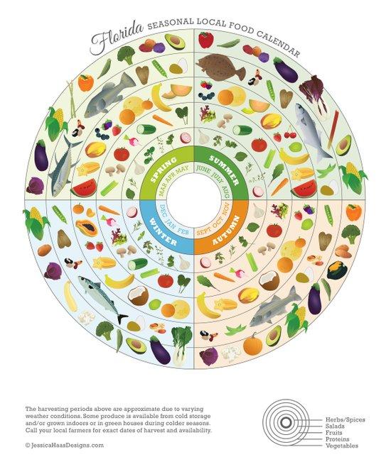 Art Calendar Florida : Florida seasonal local food calendar art print by jessica