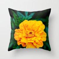 Tangerine Beauty Throw Pillow