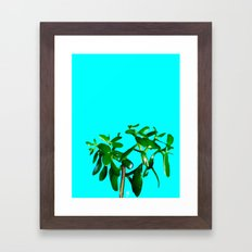 Good Luck Succulent Tree… Framed Art Print