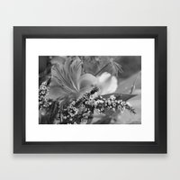 Freesia 2 B&W Framed Art Print
