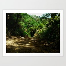Outdoors @ Rincon Puerto Rico Art Print