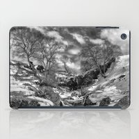 Waterfall Snowfall iPad Case