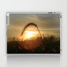 Field Grass Sunrise Laptop & iPad Skin