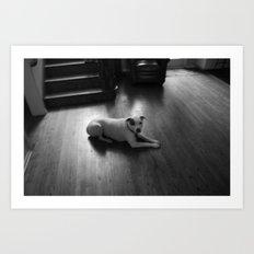 Dawg: 3 Art Print