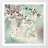Midwinter Daydream Art Print
