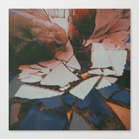Lychee Mosaic Canvas Print