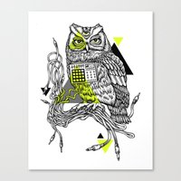 DiscOwl 2c Canvas Print