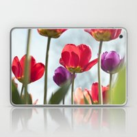 Tulip Series 5 Laptop & iPad Skin