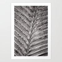 Secret Garden ~ No.4 Art Print